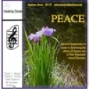 PTSD - PEACE DVD for Large Screen TVs